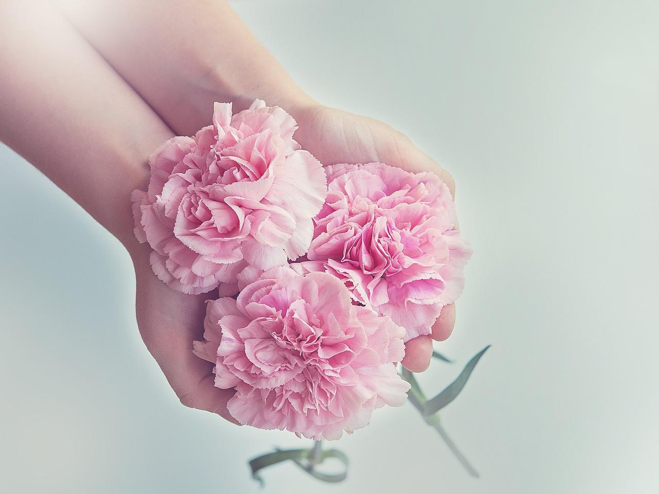 リュウソウジャー ピンク かわいい